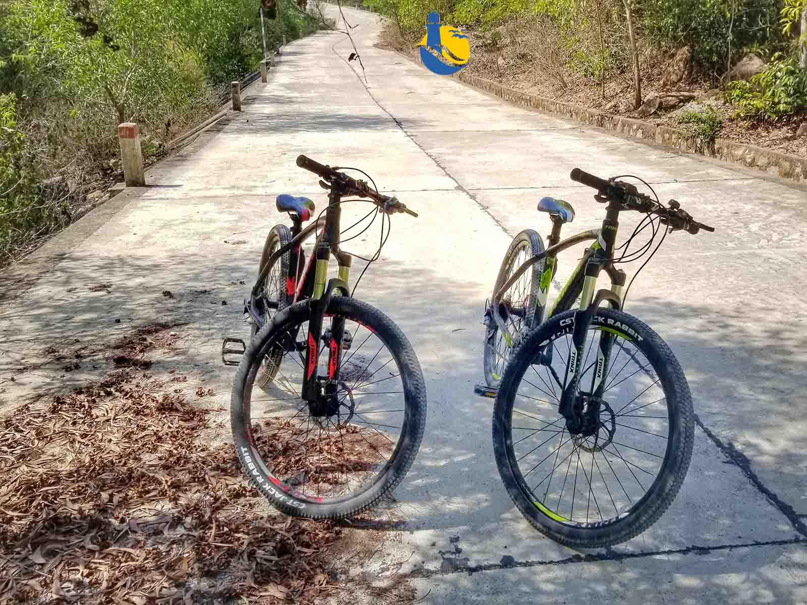 Dịch vụ cho thuê xe đạp địa hình du lịch Cù Lao Xanh - Quy Nhơn