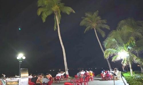 bar cây dừa quy nhơn